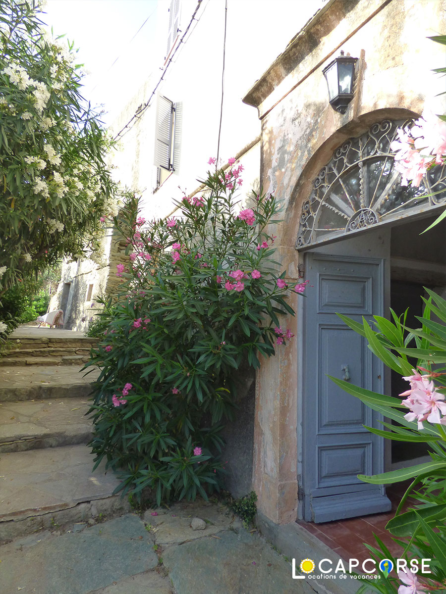 Locations Cap Corse - The entrance to the house with its laurels in bloom