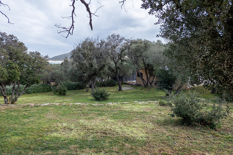 Holiday house with garden and near sea in Barcaggio in Cap Corse
